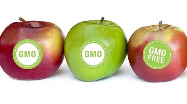چاپ برچسب روی میوه